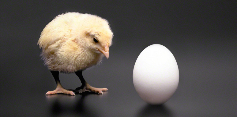 perception-of-time-egg-or-chicken
